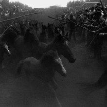 A rapa das bestas. San Lorenzo de Sabucedo, la estrada, Pontevedra, 1970