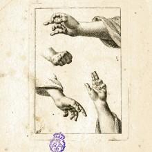 [ESTUDIO de manos]. [Entre 1750 y 1800?]